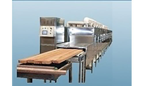 Continuous conveyer-type microwave drying