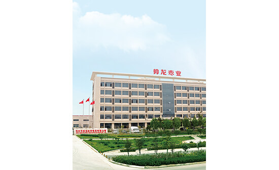 Zhengzhou Shuai Long date food company